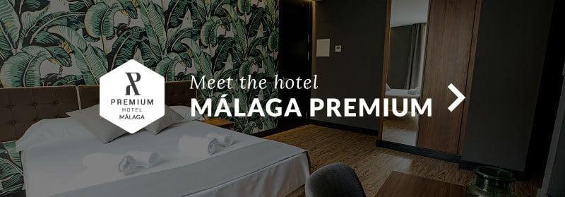 Hotel Málaga Premium